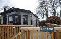Pine Cone Thumbnail 1