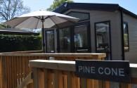 Pine Cone Thumbnail 14
