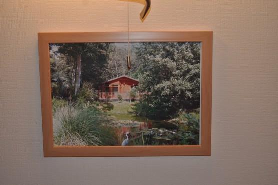 Omar Kingfisher Lodge Image 10